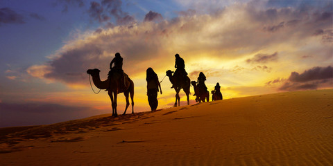 Tuinposter Kameel Caravan of camel in the sahara desert of Morocco at sunset time