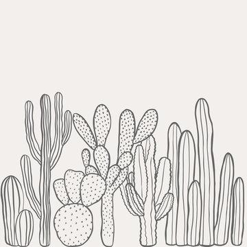 Hand drawn desert cactus background. Vintage, botanical vector illustration.