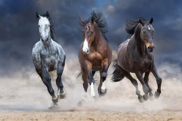 Horse herd run free on desert dust against storm sky Wall mural