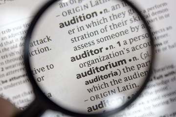 The word of phrase - auditor - in a dictionary.