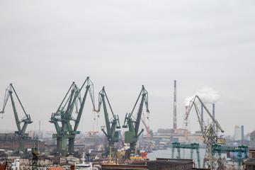 Żurawie portowe Gdańsk