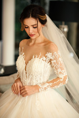 beautiful young bride with dark hair in luxurious wedding dress