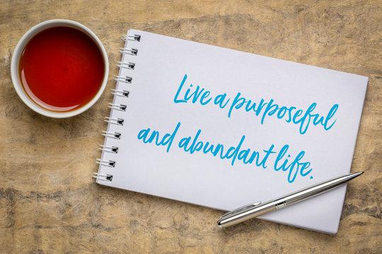 live a purposeful and abundant life