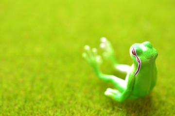カエル リラックスのイメージ