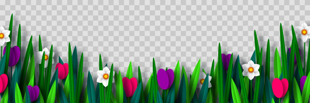 Vector spring flower border with tulips and narcissus, isolated on transparent background. Paper cut style. Decorative frame for Womens, Mothers Days, spring or summer seasonal holidays.