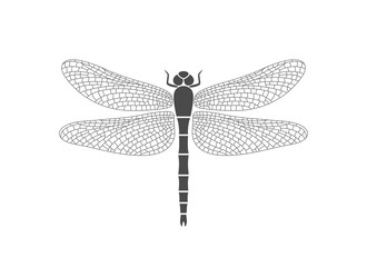 Dragonfly logo. Isolated dragonfly on white background
