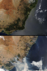 Comparison of the Eastern Australian coast between January 2019 and January 2020 - extreme bushfire season has lead to a brown surface of the continent - Elements of this image furnished by NASA
