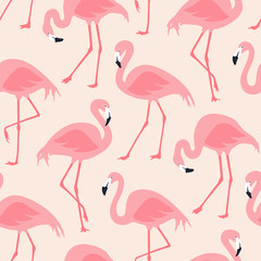 Canvas Prints Vector seamless pattern with flamingos