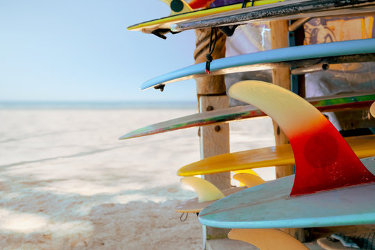 Colorful surf boards in shop for rent on the beach. water sports  equipment. vintage color tone effect.