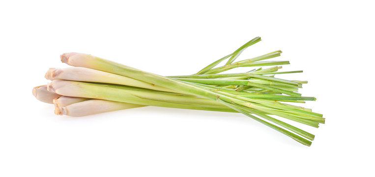 lemon grass on white background.