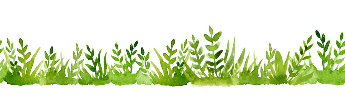 Watercolor border of green grass isolated on white background.