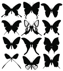 Set of butterflies silhouettes isolated on white background. Vector illustration