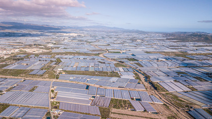 Drone aerial view of the greenhouses in the region of Andalusia  spain .