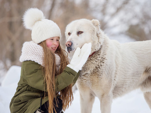 Beautiful little girl hugs an Alabai dog in winter