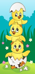 Deurstickers Voor kinderen Cute chickens topic image 5