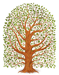 Old tree isolated on transparent background. Vector illustration.