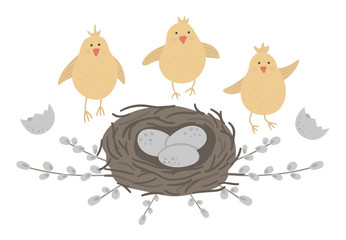 Vector flat funny chickens with eggs in nest framed with pussy willow branches. Cute Easter illustration. Spring holiday picture isolated on white background..