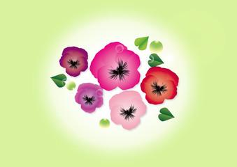 パンジー作りかけパンジー春の花ピンク系の花びらのイラストグリーン背景素材