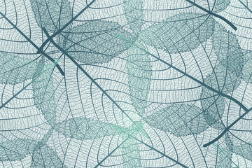 Seamless pattern with Linden leaves veins. Vector illustration. EPS 10