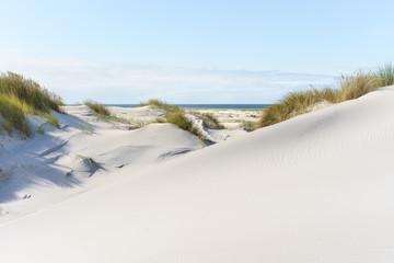 Wall Mural - Dünenlandschaft an der Nordsee