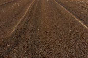 畑の火山灰土