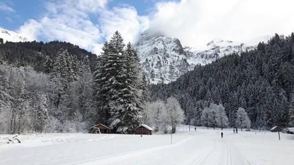 Obraz Trasy narciarstwa biegowego w górach - Alpy, Szwajcaria - fototapety do salonu