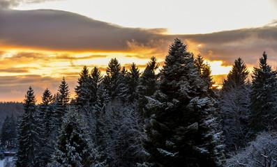 Sonnenuntergang im Winter kalt