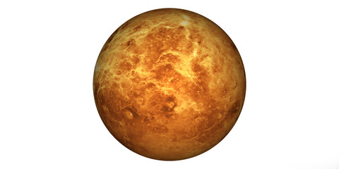 planet Venus white background Fotomurales