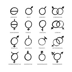 Vector brush icons of gender symbols and combinations. Male, female, transgender, lesbian, gay, homosexual,