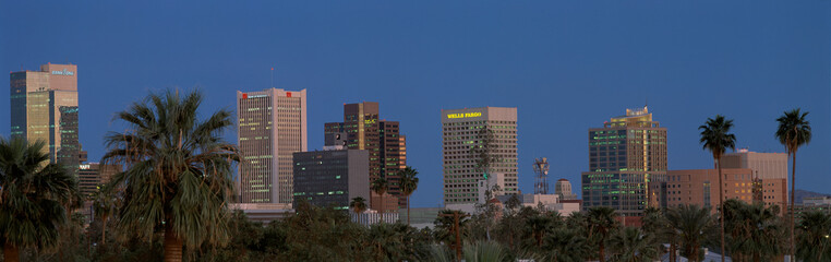 Fotomurales - This is the skyline at dusk with palm trees surrounding the city.