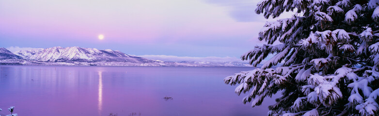 Wall Mural - This is Lake Tahoe after a winter snow storm. There is a full moon rising over the lake and the trees and mountains are covered in snow.