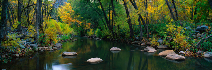 This is Cottonwood Canyon in the autumn. There is a stream flowing through the canyon.