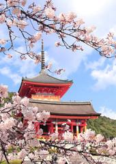 Garden Poster Kyoto Kiyomizu-dera Temple and sakura flowers, Kyoto, Japan