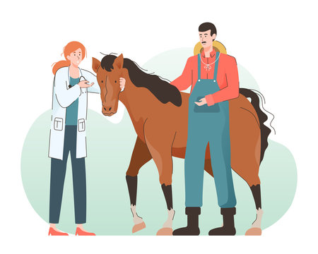 Young woman veterinarian doctor examining a horse. Pet health care and medical concept