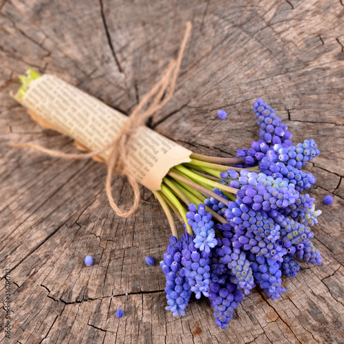 Blue muscari, bouquet of flowers on old wooden background. Bunch of hyacinth.