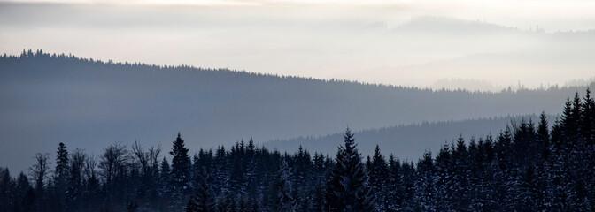 Spoed Fotobehang Grijs Winter forest in dramatic sunrise with fog in the Carpathians, Romania.