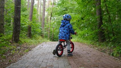 Fototapeta Dziecko w kasku jedzie na rowerze na drodze w lesie wśród drzew.
