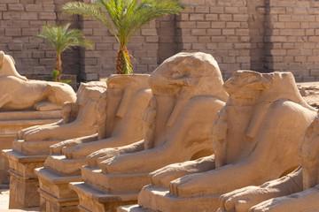 Alley of the ram-headed Sphinxes. Karnak Temple. Luxor, Egypt.
