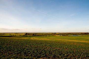 lincolnshire farmland