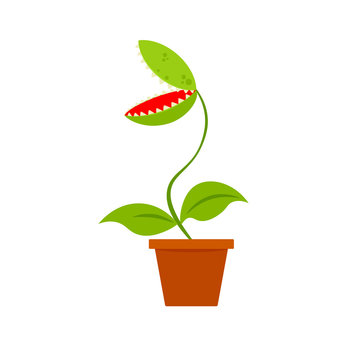 Venus fly trap in pot icon. Clipart image isolated on white background