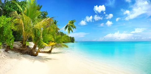 Beautiful beach with white sand, turquoise ocean, blue sky with clouds and palm tree over the water...