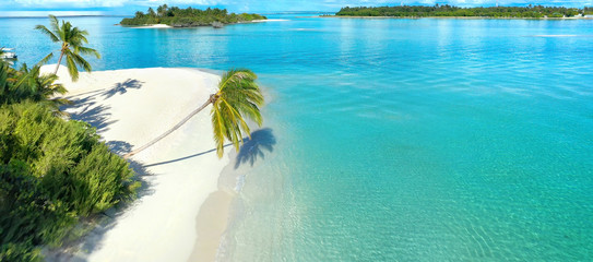 Papiers peints Cote Beautiful white sandy beach with turquoise ocean water, waves, green palm trees bent over water, Aerial view, island, tropical landscape Maldives, copy space.