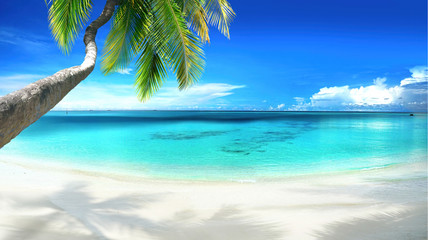 Papiers peints Palmier Beautiful tropical beach with white sand, turquoise ocean on background blue sky with clouds on sunny summer day. Palm tree leaned over water. Perfect landscape for relaxing vacation, island of Maldi