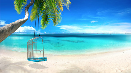 Foto auf AluDibond Palms Beautiful tropical beach with white sand, turquoise ocean on background blue sky with clouds on sunny summer day. Tilted palm tree with swing. Perfect landscape background for relaxing vacation.