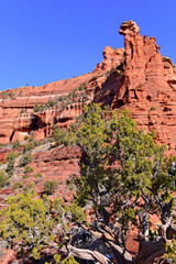 Foto op Plexiglas Zalm Red rock desert landscape of Sedona, Arizona a spiritual location for retreats and many spa