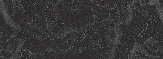 Background of the topographic map. Topographic map lines, contour background. Geographic abstract grid. EPS 10 vector illustration.