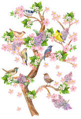 fancy high tree with seating colorful birds on flowering branches. watercolor painting