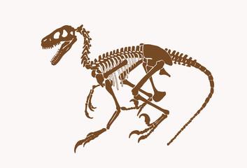 Graphical vintage sketch of dinosaur skeleton, sepia illustration,paleontology