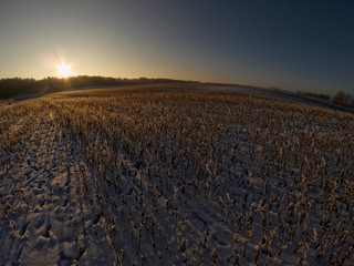 Spoed Foto op Canvas Chocoladebruin Winter sunset near the city of Giżycko, Mazury, Poland