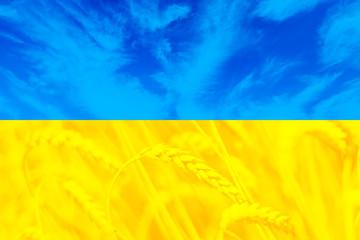 Beatiful flag of Ukraine, symbolizing sky and fields, wallpaper
